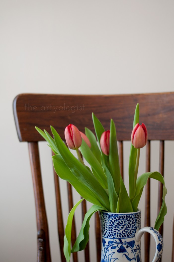 An Ode to Tulips, the artyologist
