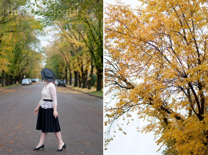 walking-away-and-yellow-trees