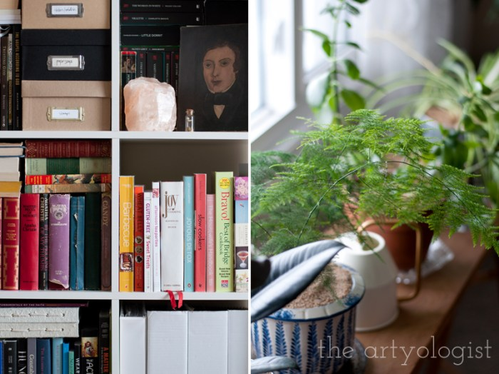 plants-and-books, the artyologist