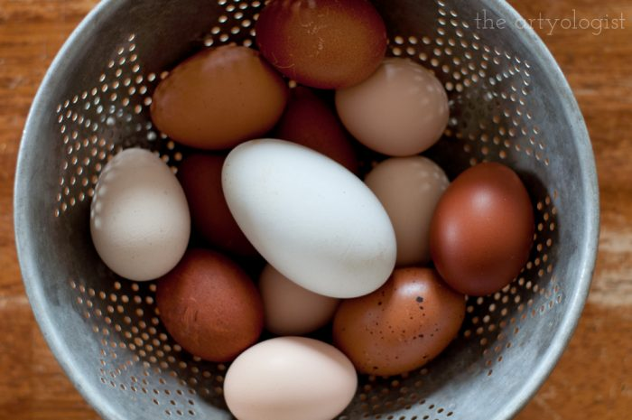 a vintage metal colander filled with brown chicken eggs and one large white goose egg