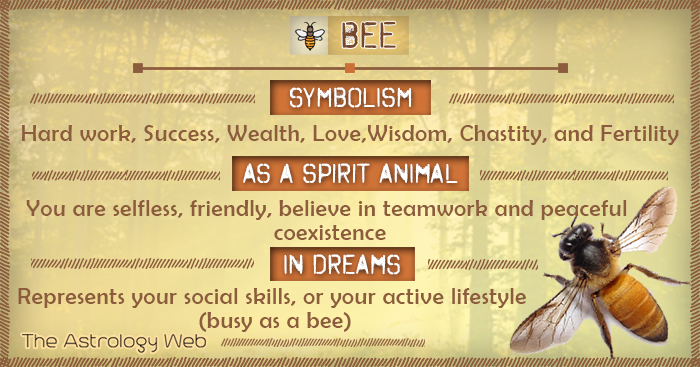 Bee Meaning and Symbolism   The Astrology Web
