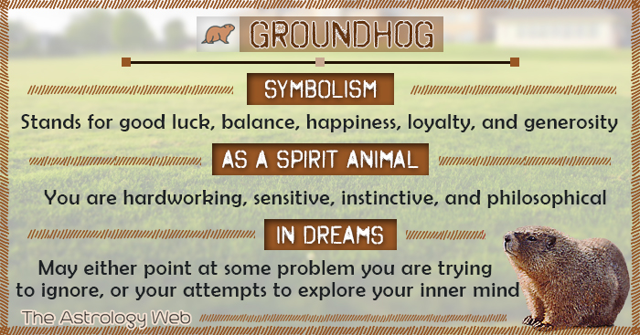 Groundhog Meaning and Symbolism  The Astrology Web