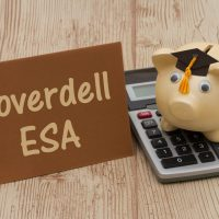 Is A Coverdell ESA Right For You?