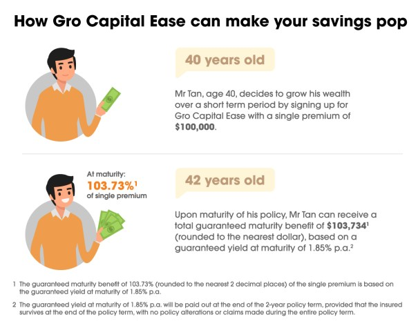 Gro Capital Ease Infographic