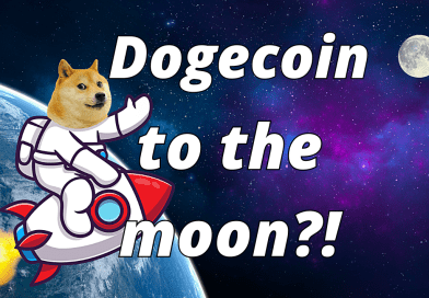 DOGECOIN MILLIONAIRE! Why concentrating is the fastest way to get rich but usually foolish!