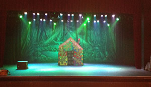 Stage Productions Family Theatre using TheatreWorld's Professional Scenic Backdrop Extremely Dark Forest