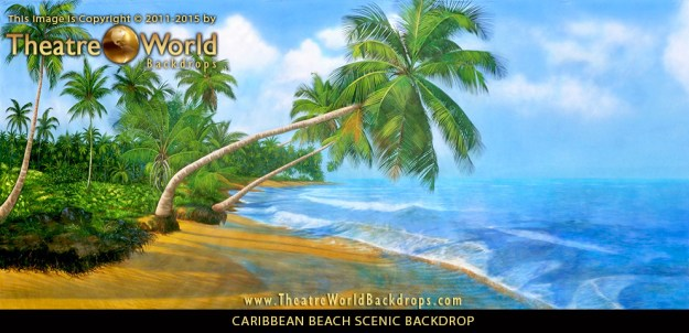 Professional Scenic Backdrop Caribbean Beach