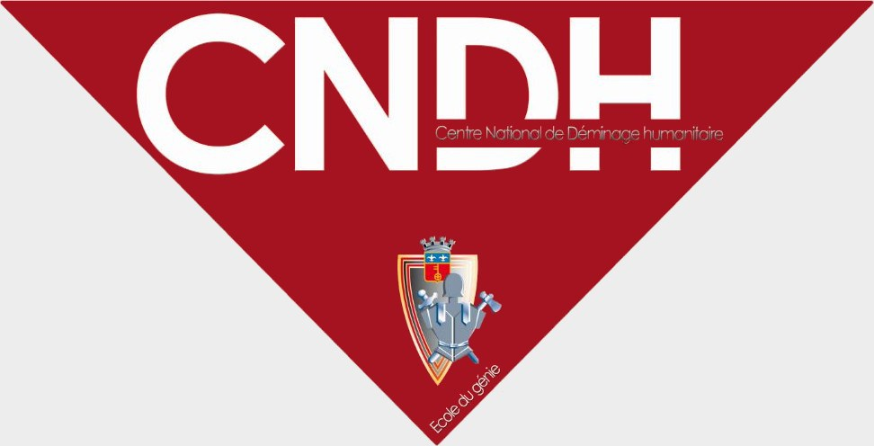 CNDH (1)