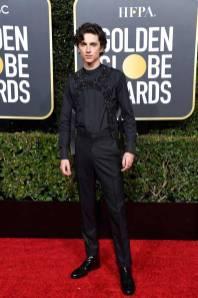 Timothèe Chalamet ai Golden Globes 2019
