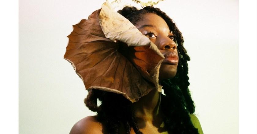 Musa Shop-Your Beauty  Telescope: la parabola ascendente da web magazine a boutique on line line