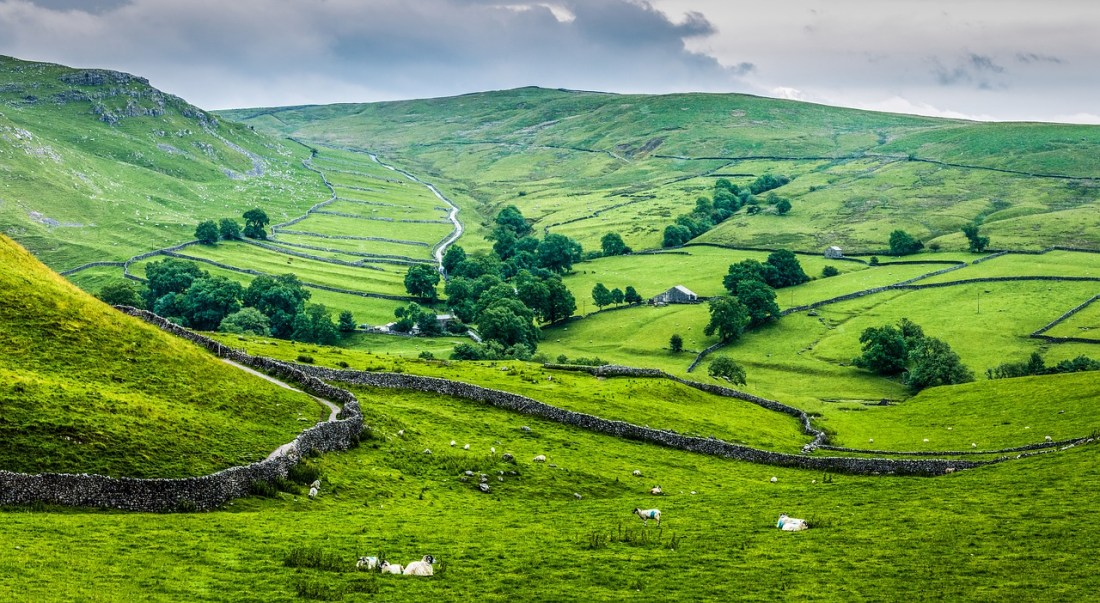 English countryside with stone walls