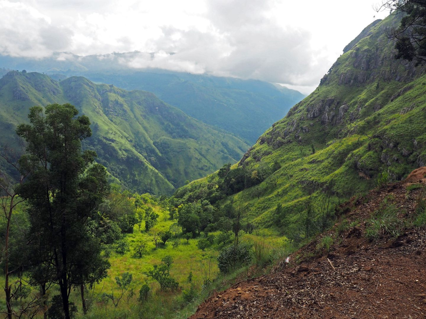 Hiking Ella Rock in Sri Lanka: A Guide to doing it without a Guide