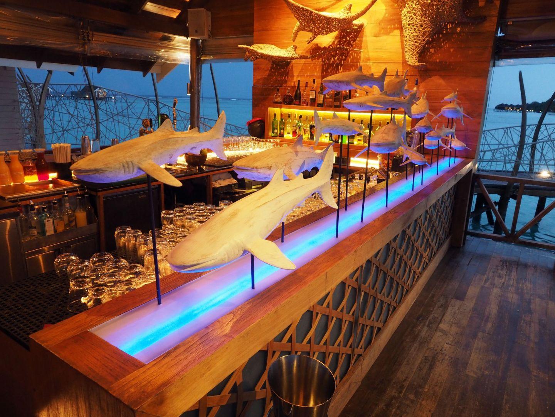 Sharks at East Bar LUX Maldives