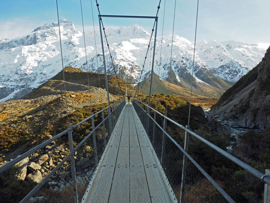 Bridge Hooker Valley Track