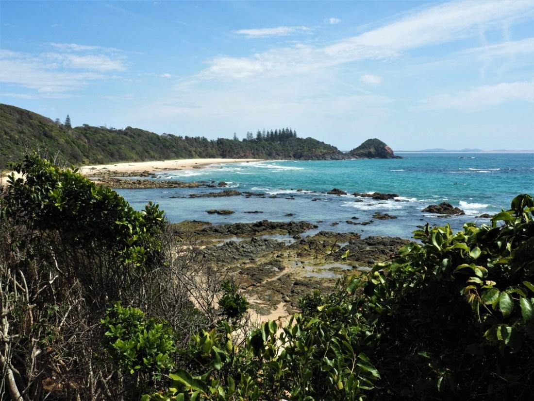 Shelley Beach Coastal Walk Port Macquarie