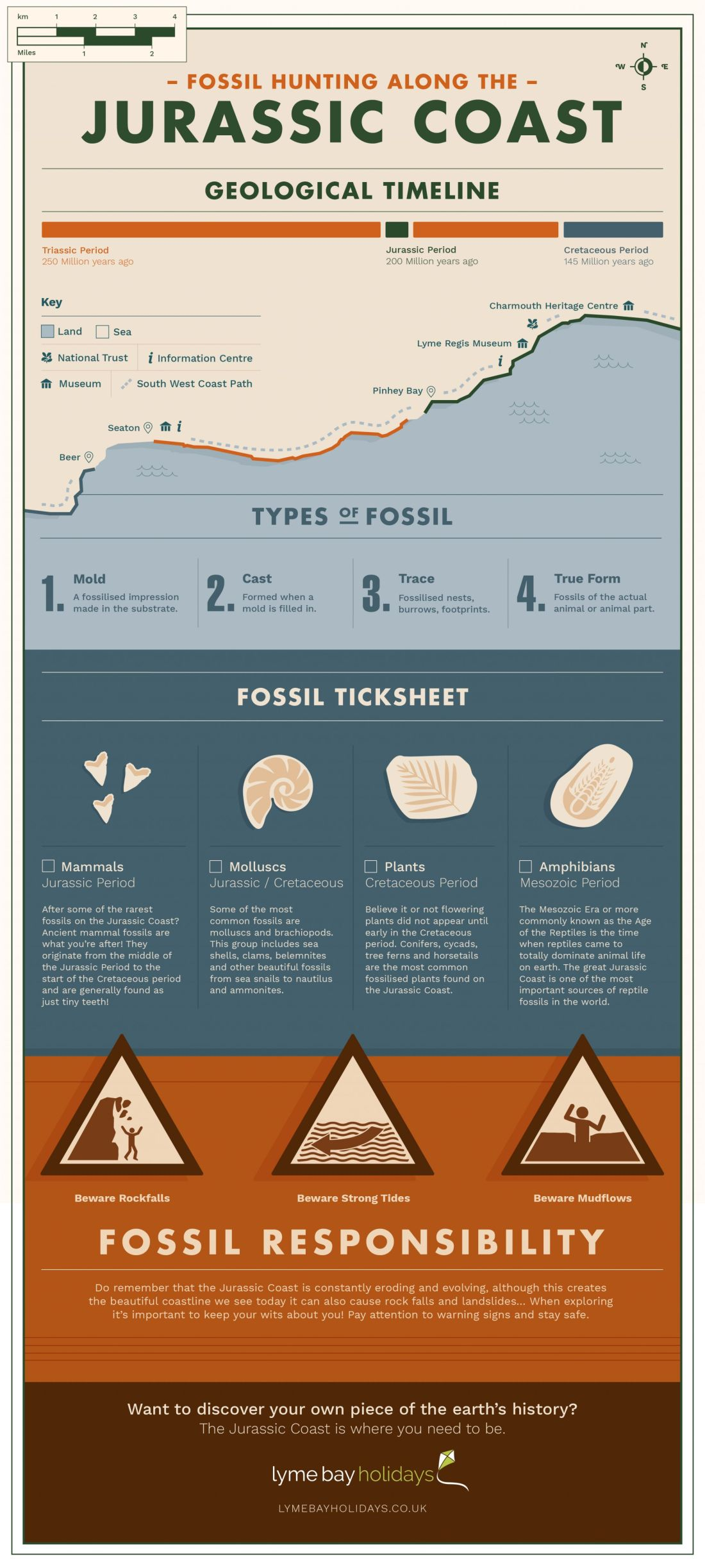 Lyme Bay Jurassic Coast Infographic