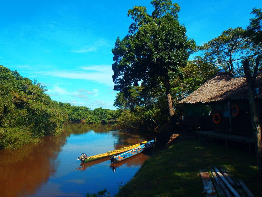 Pampas Jungle Lodge