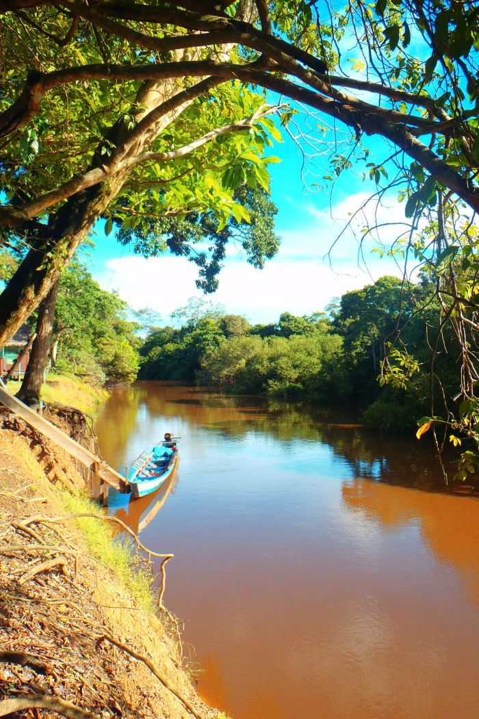 Three Days in the Amazonian Pampas