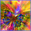 the-austin-alchemist-media-company-offers-body-mind-spirit-news-resources-and-events-rainbow-butterfly