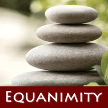 Gerry Starnes - Workshop Equanimity - Austin Texas