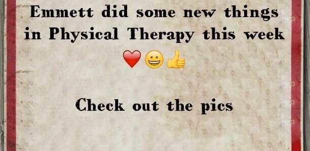 Emmett did some new things in Physical Therapy this week  ***Check out the pics***