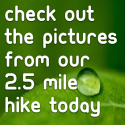 Check out the pictures from our 2.5 mile hike today