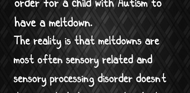The Did You Know's of Autism: The Misconceptions Surrounding Overstimulation and Meltdowns