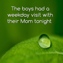 The boys had a weekday visit with their Mom tonight
