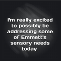 I'm really excited to possibly be addressing some of Emmett's sensory needs today