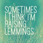 Sometimes I think I'm raising lemmings