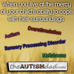 When you live at the mercy of your child's ability to cope with their surroundings
