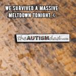 We survived a massive meltdown tonight :(