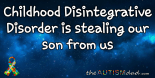 Childhood Disintegrative Disorder is stealing our son from us