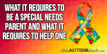 What it requires to BE a Special Needs Parent and what it requires to HELP one