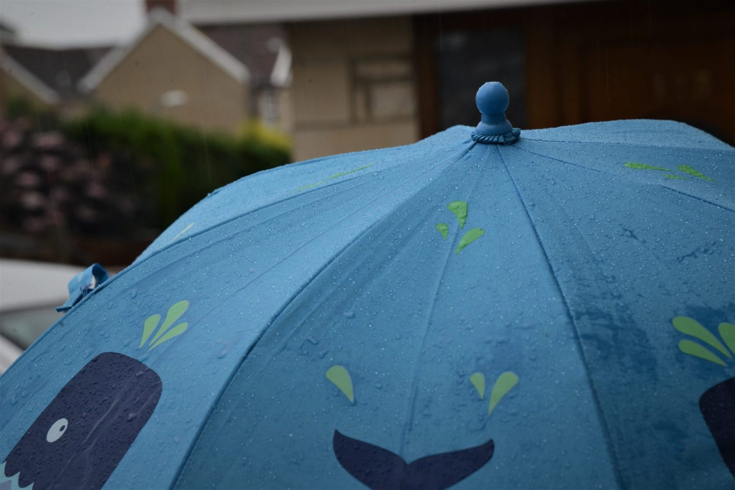 Ziggle colour changing umbrella review
