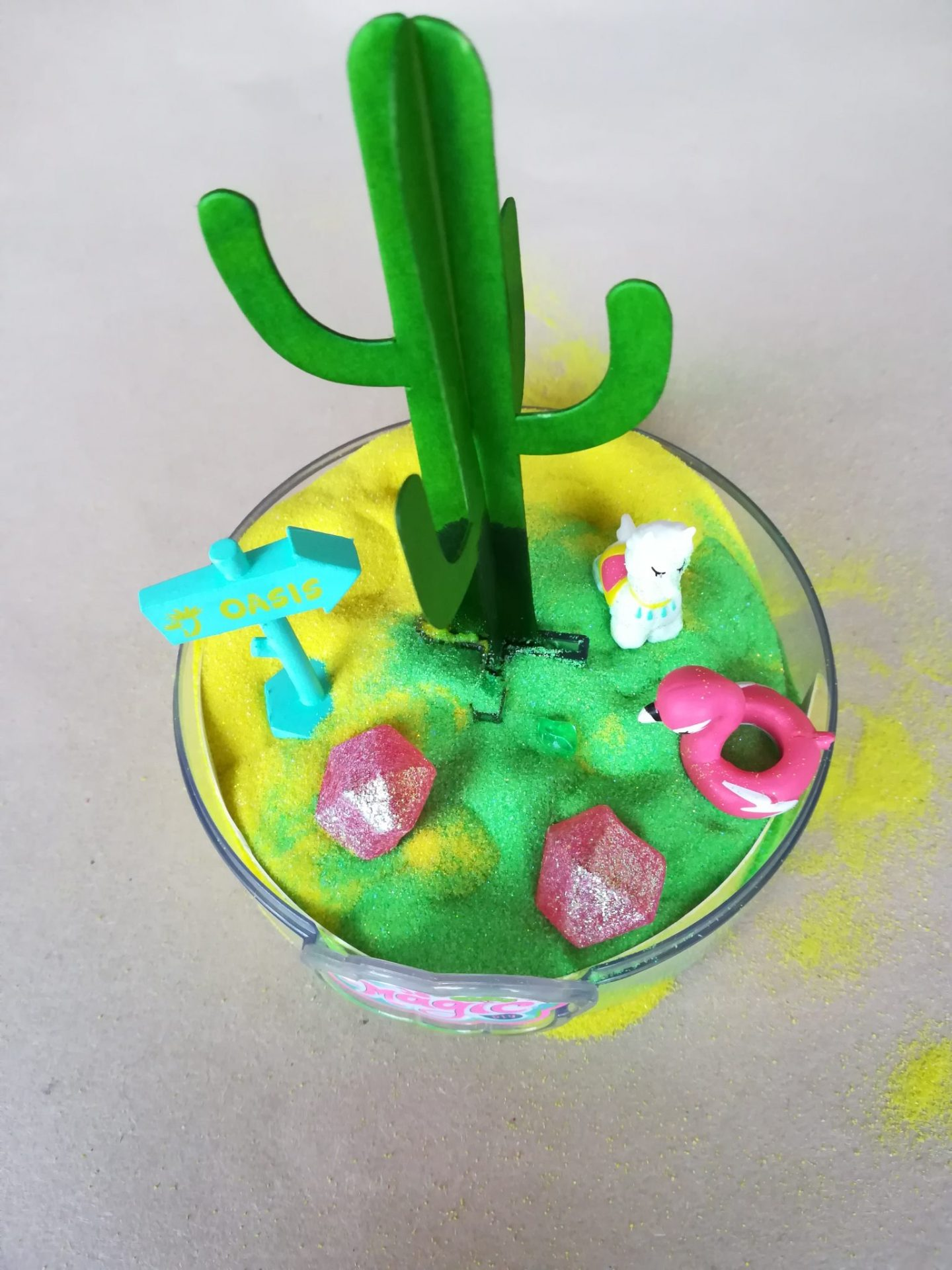 Cactus decorated