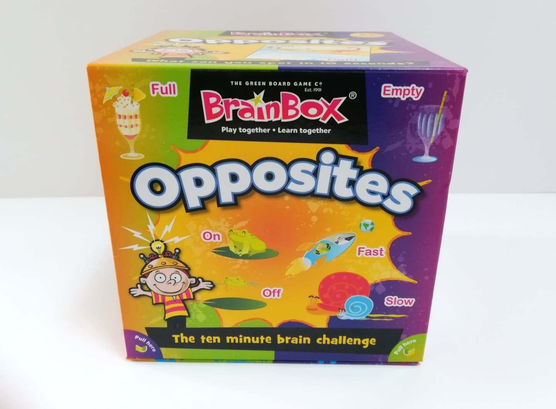 BrainBox Review