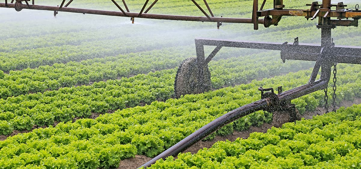 Automation in Irrigation Systems - Automation EngineerAutomation Engineer