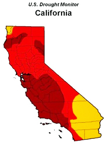 """(Eighty percent of California is considered to be in """"extreme"""" drought — the areas marked by red and burgundy, according to the US Drought Monitor.)"""