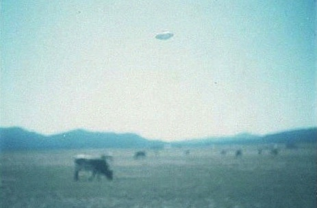 Montana, 1977