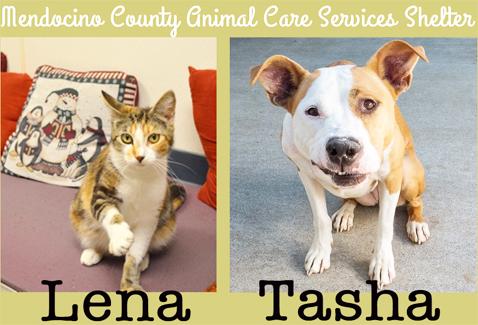 Lena&Tasha