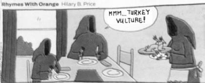 turkeyvulture