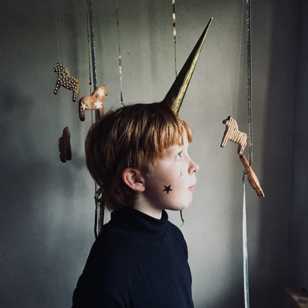 boy with a unicorn horn on his head
