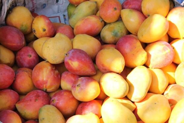 Ripe-mangoes