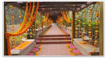 Marigold-flower-decoration