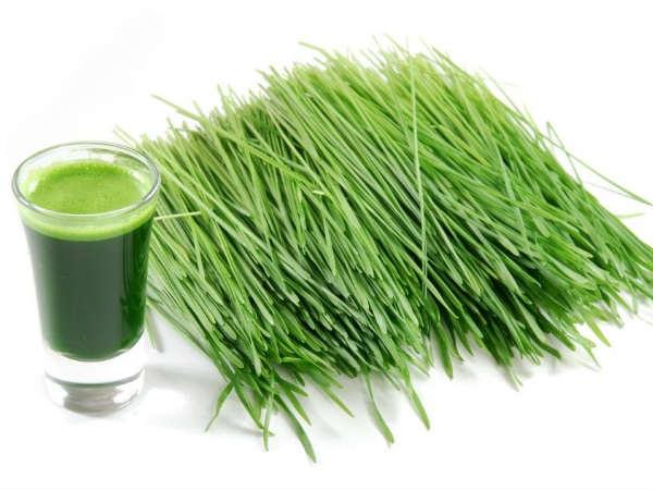 Juice of Doob grass