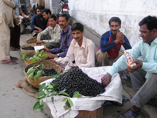 Jamun fruit being sold in markets.
