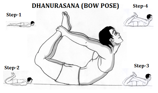 steps to do Dhanurasana