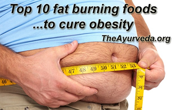 Top 10 fat burning foods to cure obesity