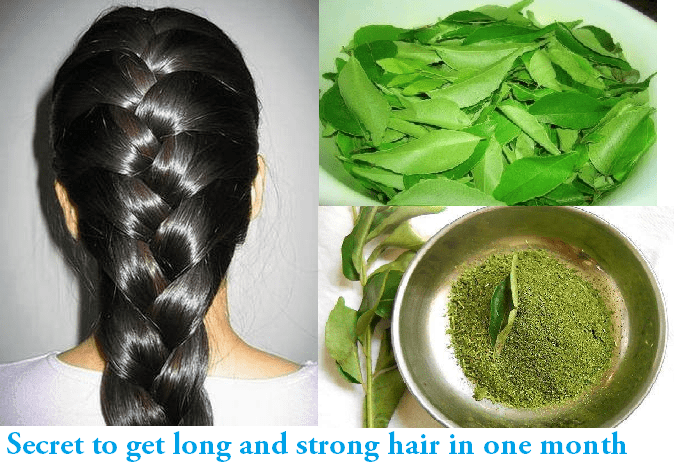 Curry leaves for hairs